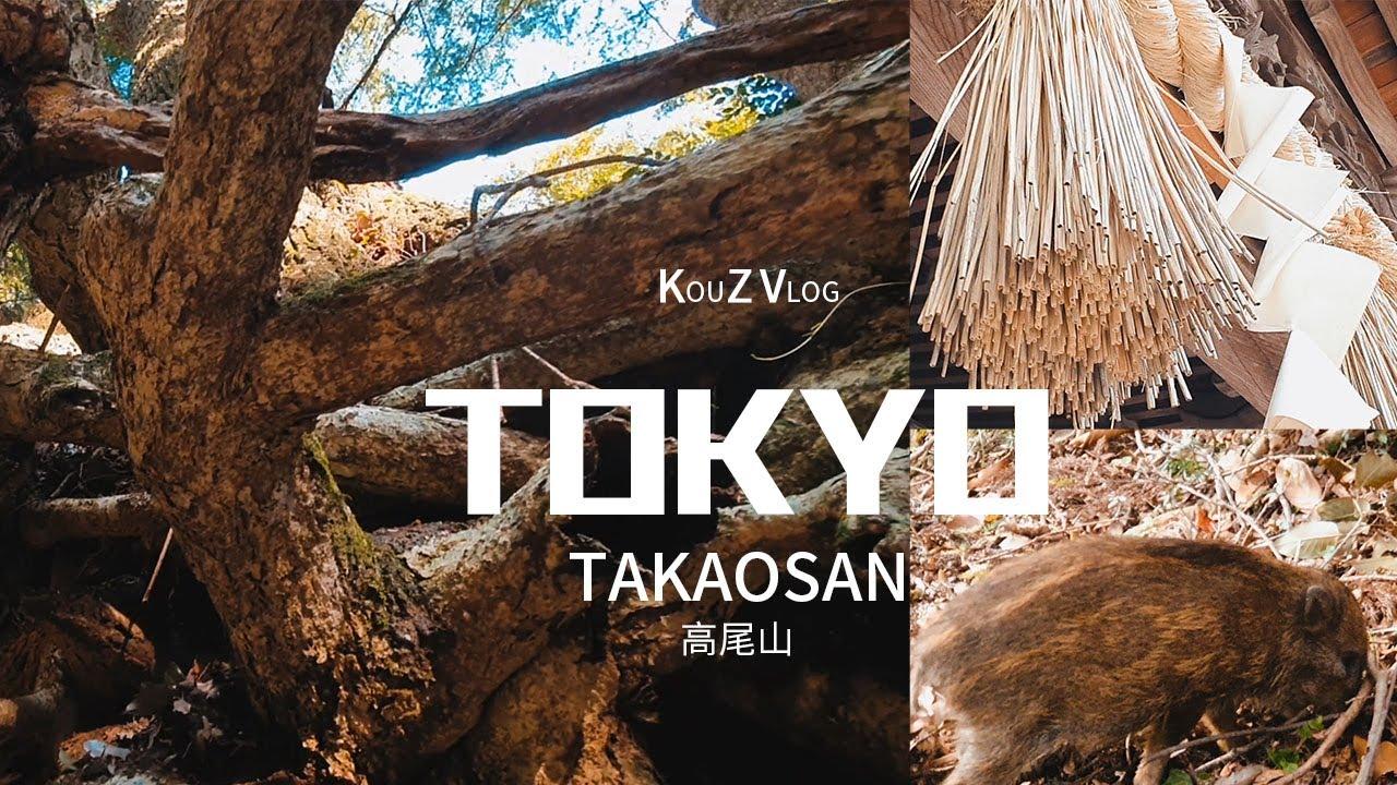 東京Vlog| 什麼!?去東京爬山不是爬富士山??| 高尾山 | 釦子