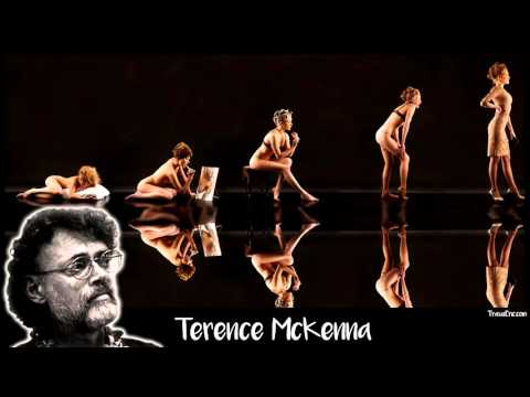 Terence McKenna - Life Driven by Purpose