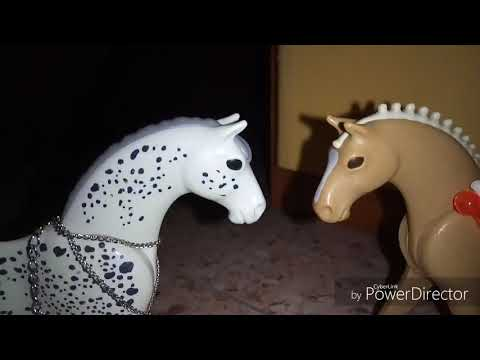 paralized playmobil horses star wars
