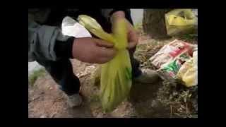 Lov štekom - Mirsad Bogilović na rijeci Bosni