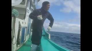 大間マグロ一本釣り漁師さんの親子船「善漁丸」