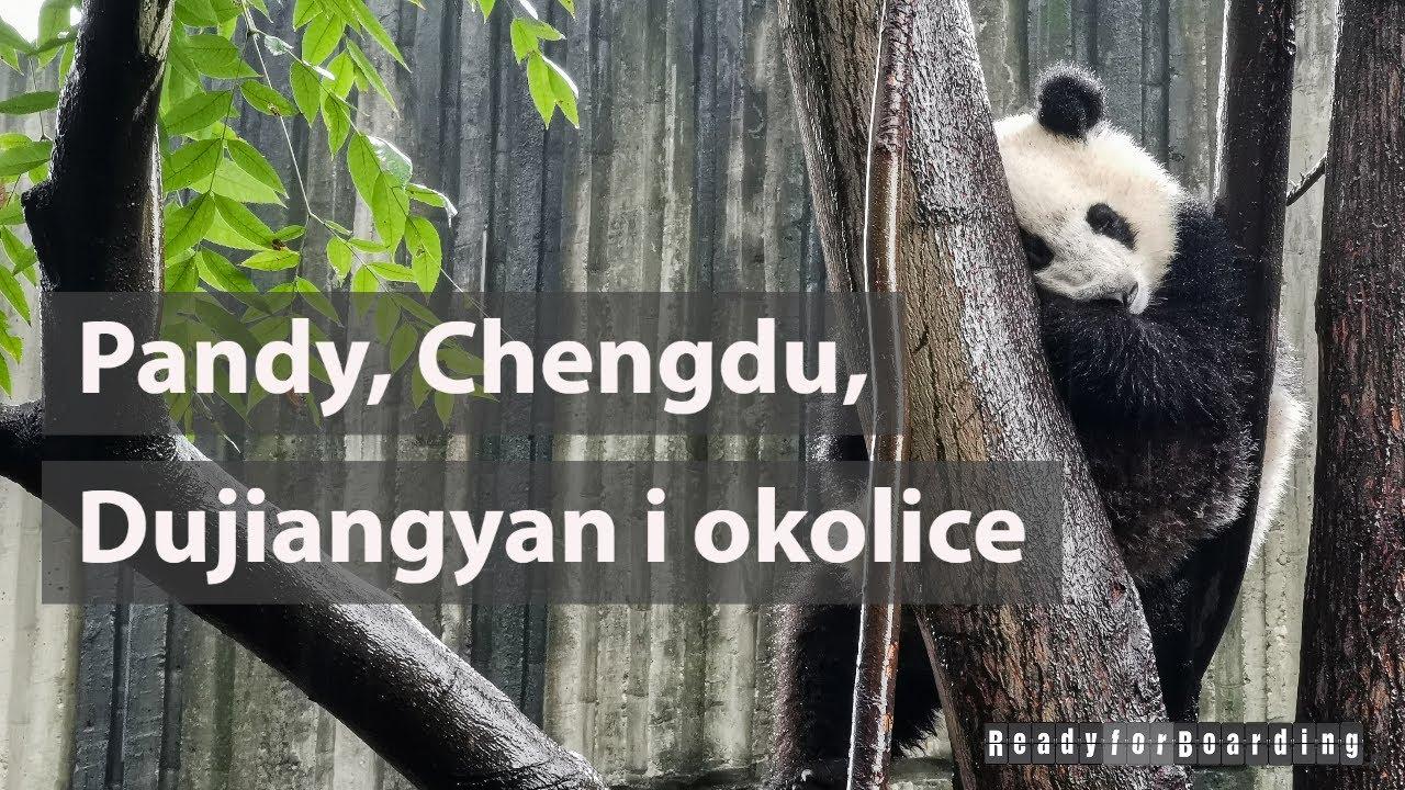 🐼🐼 Pandy, Chengdu, Dujiangyan i okolice 🐼🐼