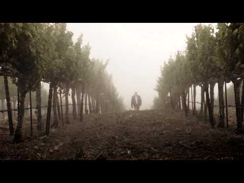 Jackson Estate - A tribute to our family's estate vineyards.