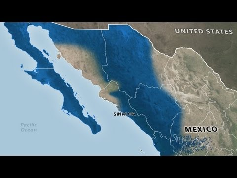 Mexican Cartels: Sinaloa Federation