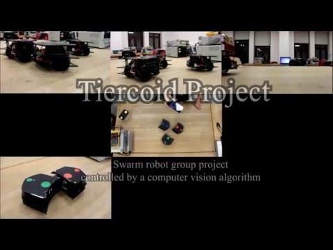Tiercoid Project by Koç IEEE/RAS