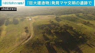 マヤ文明で長さ1.4キロの建造物 茨城大教授ら発見(20/06/04)