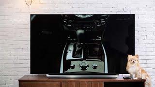 Trên tay LG C8 - TV OLED 4K HDR