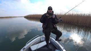 Рыбалка с приключениями на Веселовском водохранилище Река Маныч выручает