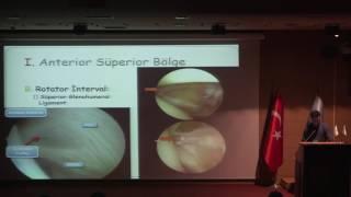Artroskopik Omuz Anatomisi ve Portaller / Dr. Baran Sarıkaya
