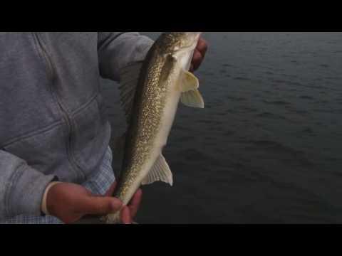 Tony Roach Fishing Report Late May '16
