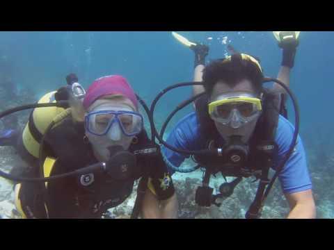 Cuba - Playa Girón - Buceo en sitios El Tanque y Punta Perdiz 2