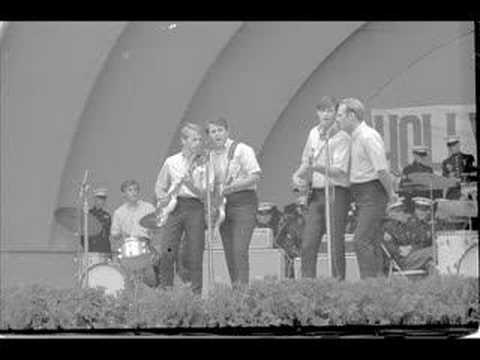Beach Boys In The Jungle The Mighty Jungle Youtube