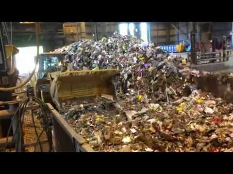 ARCHIE UNEMPLOYED - Why I was fired from my Waste Management Job