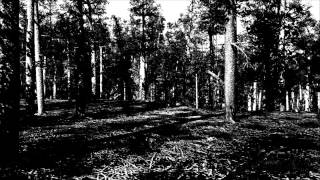 Agalloch - A Desolation Song