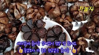 #흑마늘만들기 홍삼보다 더 좋은 구증구포 흑마늘 내몸 …