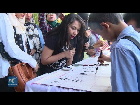 Chinese cultural week comes to Egypt!