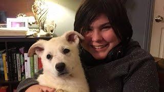 自閉症の少女、待ちに待った介助犬を手に入れた。うれしくて涙が止まらない。