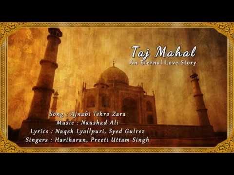 Ajnabi Thehro Zara (Lyrics Video) - Taj Mahal: An Eternal Love Story
