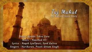 Ajnabi Thehro Zara (Lyrics Video) - Taj Mahal: An Eternal Love Story