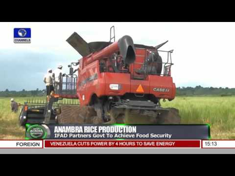 News Across Nigeria: Anambra State Trains 100 Farmers