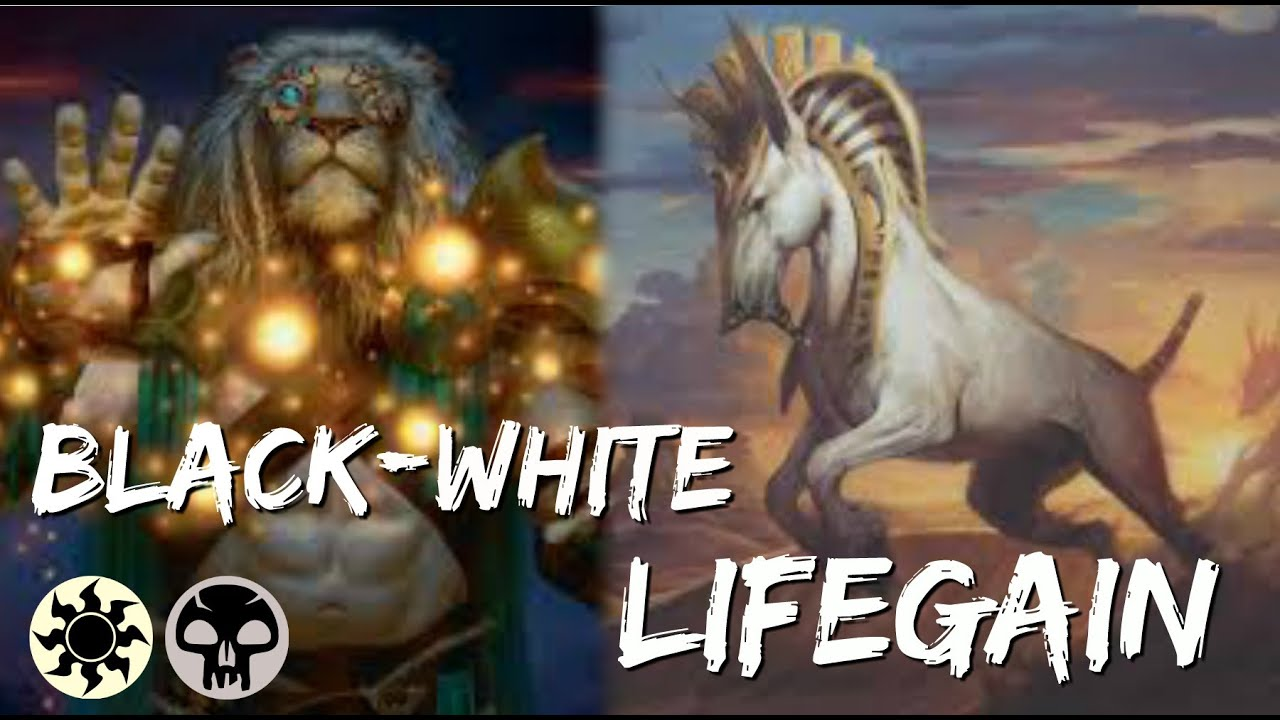 SUPER Fun Deck!! | White-Black Lifegain | MTG:Arena Gameplay