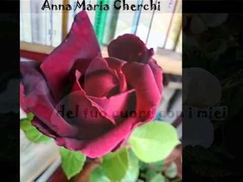 FELICITA - poesia di Anna Maria Cherchi