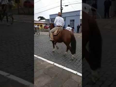 BAIXAR VIDEO 147 DO ENGRAADO FIAT