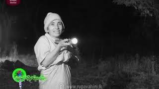 Sobadhara - සොබාධාරා | Season 2 | Episode - 20 | 2018-06-08 | Rupavahini Documentary