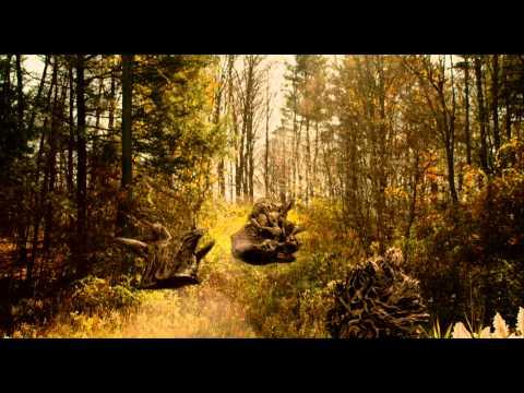 fallback-one-image-8556