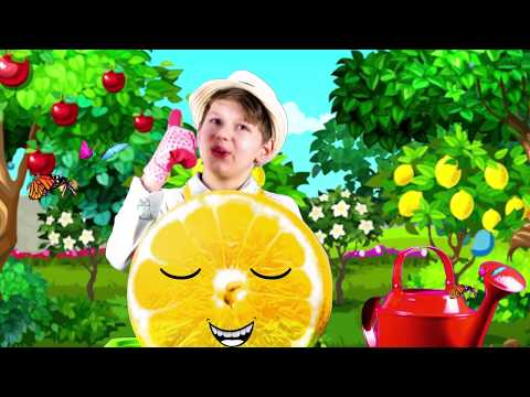 Mary Mary quite contrary Agnes kids song