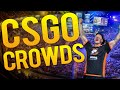 BEST CS:GO CROWD REACTIONS OF ALL TIME!
