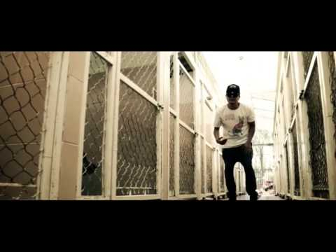 DMX: Artista produce Rap a favor de perros callejeros.