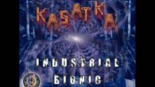 Kasatka -  chip research