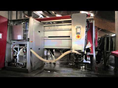 LELY milking machine