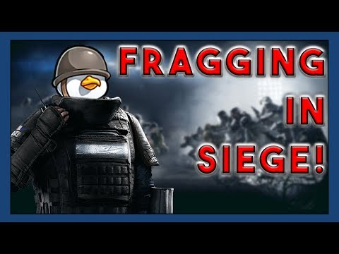 Seagull carries new players in Rainbow Six Siege!
