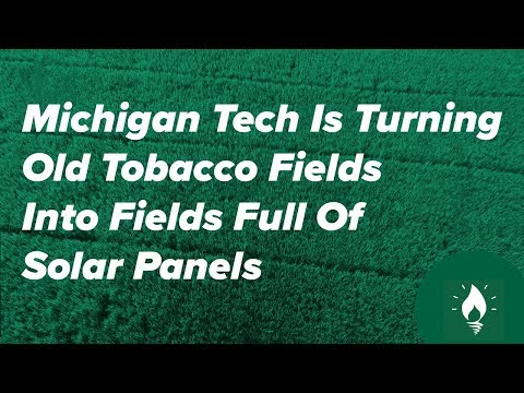Energy Sector News - Tobacco Fields Turned To Solar Fields