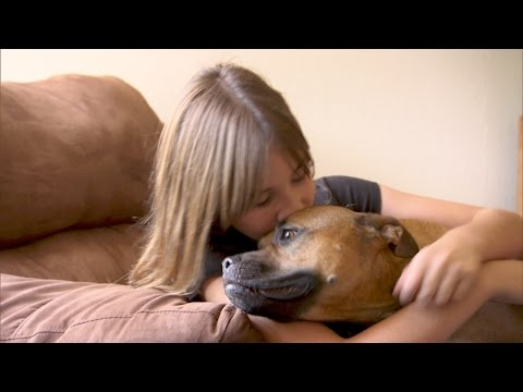 A Girl Gets the Four-Legged Best Friend She's Been Waiting For