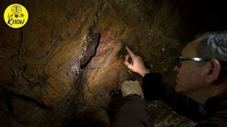 These 64,000 Year Old Paintings Have Just Been Discovered – And They Weren't Created By Humans