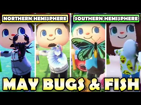 🐛🐟 ULTIMATE Bugs & Fish Guide For MAY In Animal Crossing New Horizons | North & South Hemisphere!