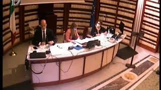"""Audizione Marzetti, commissario cooperativa """"Il Forteto"""""""