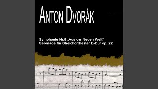 Serenade For Strings: in E-Dur op.22: II. Tempo Di Waltz