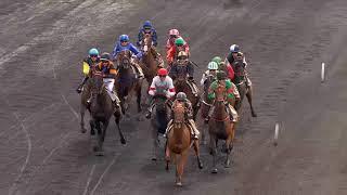 Vidéo de la course PMU PRIX ANDRE ROUER
