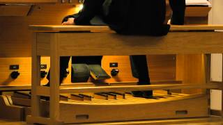 Concert for organ pedals: video-summary / Виртуозная педаль, Белгород: видео-реферат(25.11.2013 Belgorod Philharmonic Timur Khaliullin Nadezhda Vasiullina Elena Maleva Concert in the organ hall of the Belgorod Philharmonic