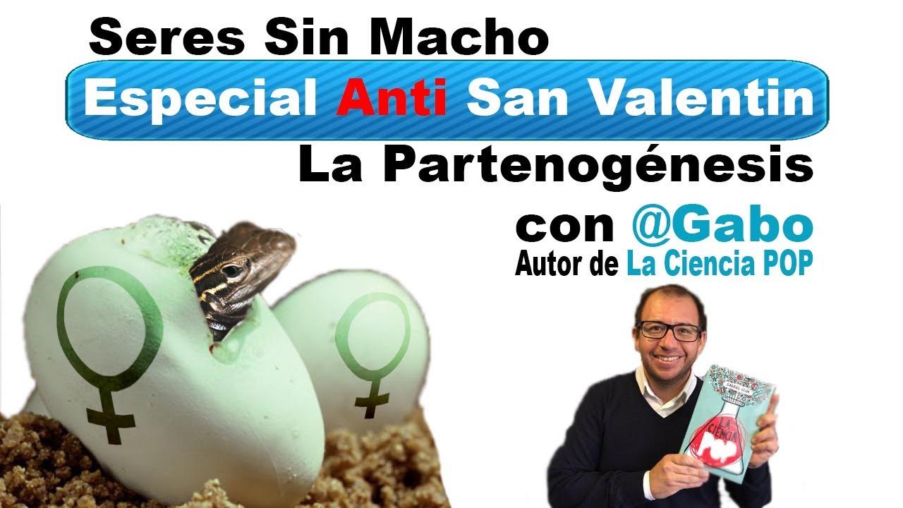 Seres Sin Macho | Especial Anti San Valentín con @GaboTuitero