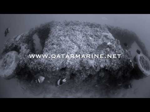 Qatar Marine The Side Van Old club reef by Khaled Zaki Under water  photography
