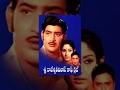Sri Rajeswari Vilas Coffee Club Full Length Movies || Krishna, Jayapradha video