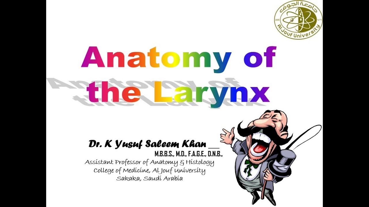 Anatomy Lecture Of Larynx Youtube