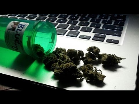 Cannabis News –  Microsoft Gets Into The Cannabis Industry – New York Hemp Legislation