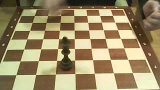 Шахматы для начинающих 8 урок : хитрый конь!