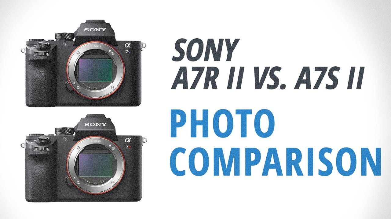 Kindle Vs Sony Reader: Sony A7R II Vs. A7S II Part 1: Photography Comparison
